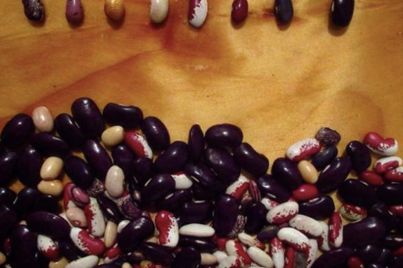 Ambrosía Apoteca Herbolaria: Revalorando y reinterpretando saberes tradicionales