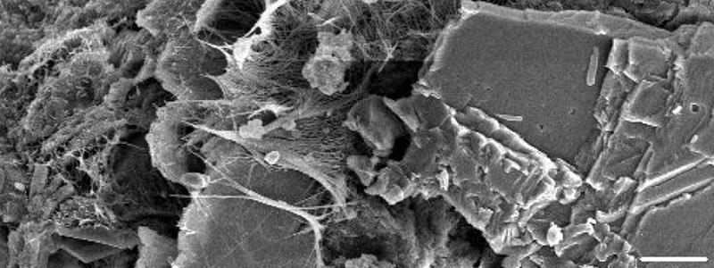 Microestructura de un cemento Portland (comercial) que produce cuerpos opacos y la luz no puede ser transmitida a su interior.