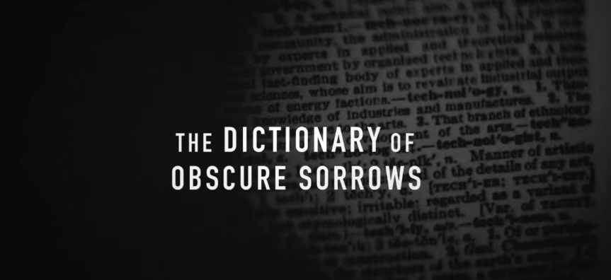 The Dictionary of ObscureSorrows