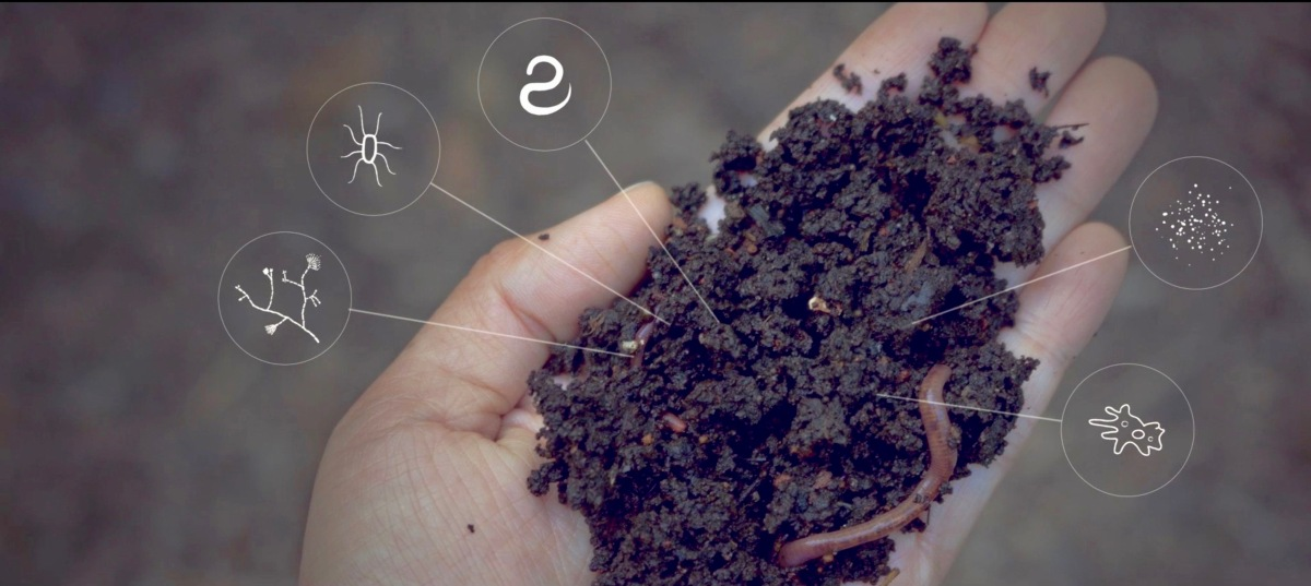 Shhhh, We've Got a Secret: Soil Solves Global Warming