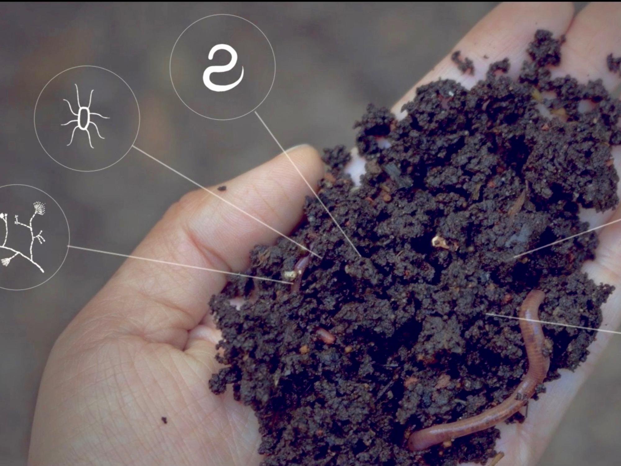 Shhhh, We've Got a Secret: Soil Solves Global Warming